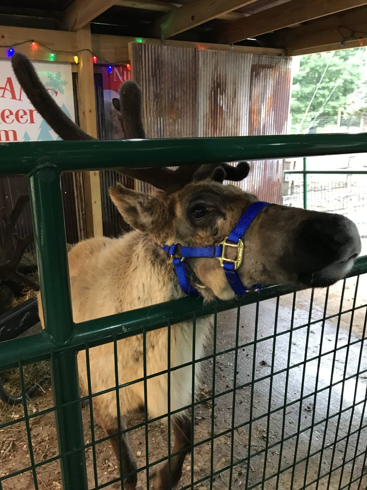 Snowman's Reindeer Farm: 25599 E Middle Lake Rd, Canton, IL