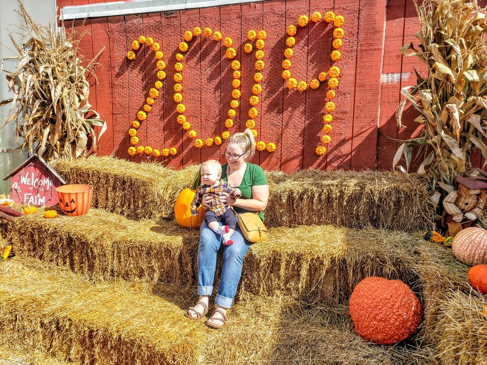 Carpenter Farms Pumpkins: 2534 E US Hwy 223, Adrian, MI