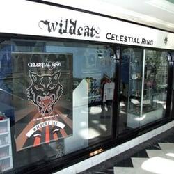 piercing shop wild cat