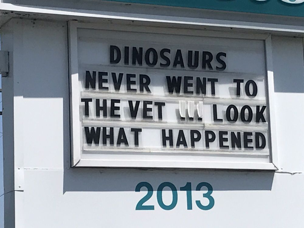 Virginia Beach Veterinary Hospital