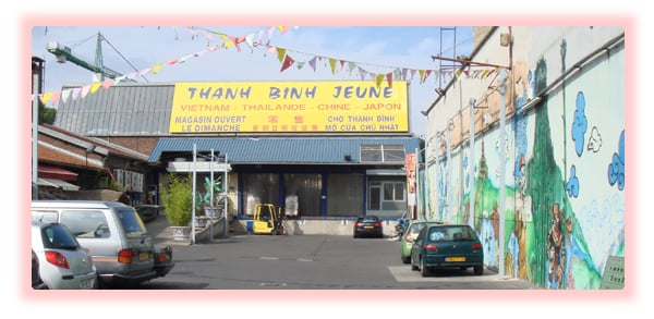 Thanh Binh Jeune