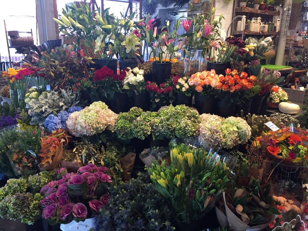 The Argyle Bouquet: 120 Coulter Ave, Ardmore, PA