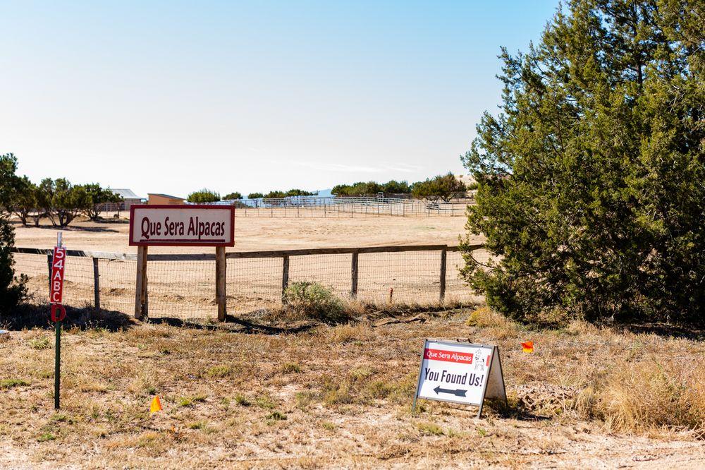 Que Sera Alpacas: 54 Jacinto Rd, Santa Fe, NM