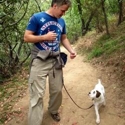 Best Dogs Ever - 45 Reviews - Pet Training - Studio City
