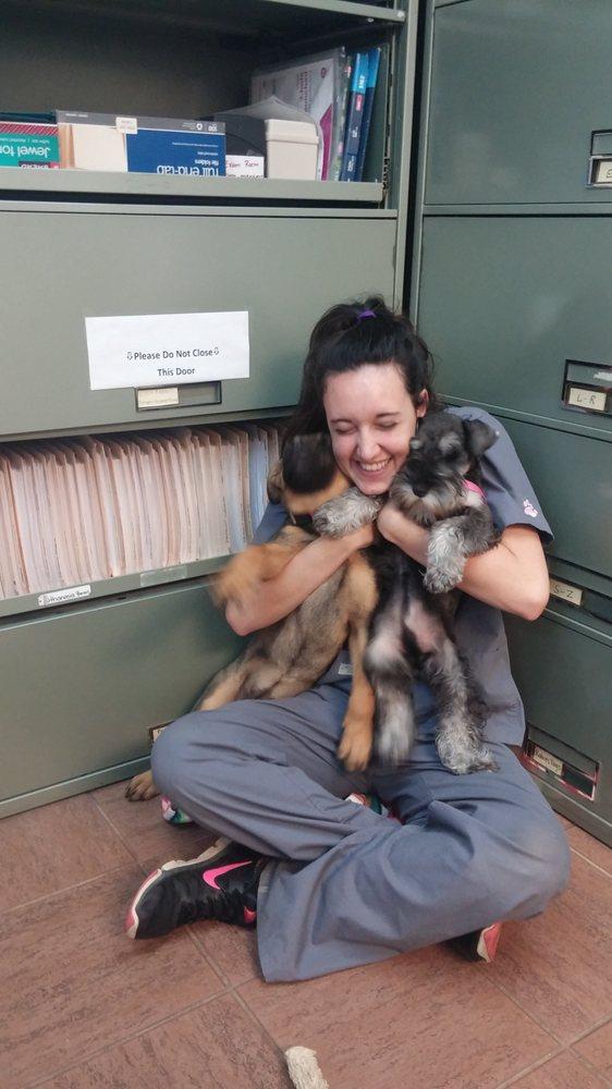Pleasant Ridge Pet Hospital: 6229 Montgomery Rd, Cincinnati, OH