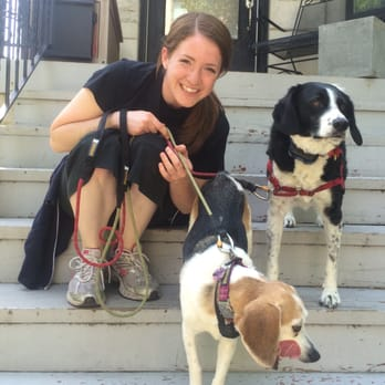 how to become a pet sitter on rover