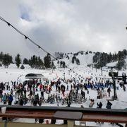 Snow Valley Mountain Resort - 284 Photos & 319 Reviews - Ski Resorts