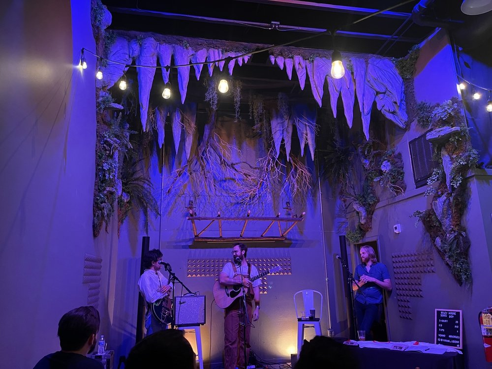 Canopy and the Roots: 53 W Main St, Dahlonega, GA
