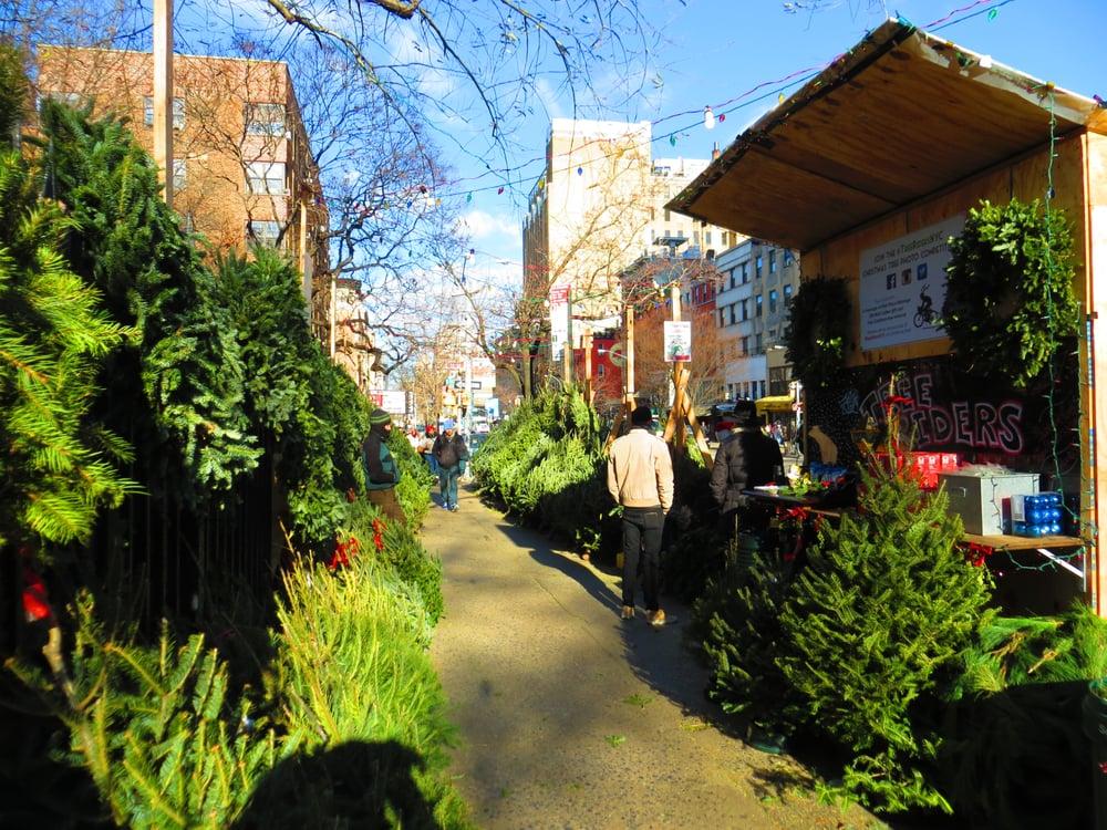 Tree Riders NYC: 131 E 10th St, New York, NY