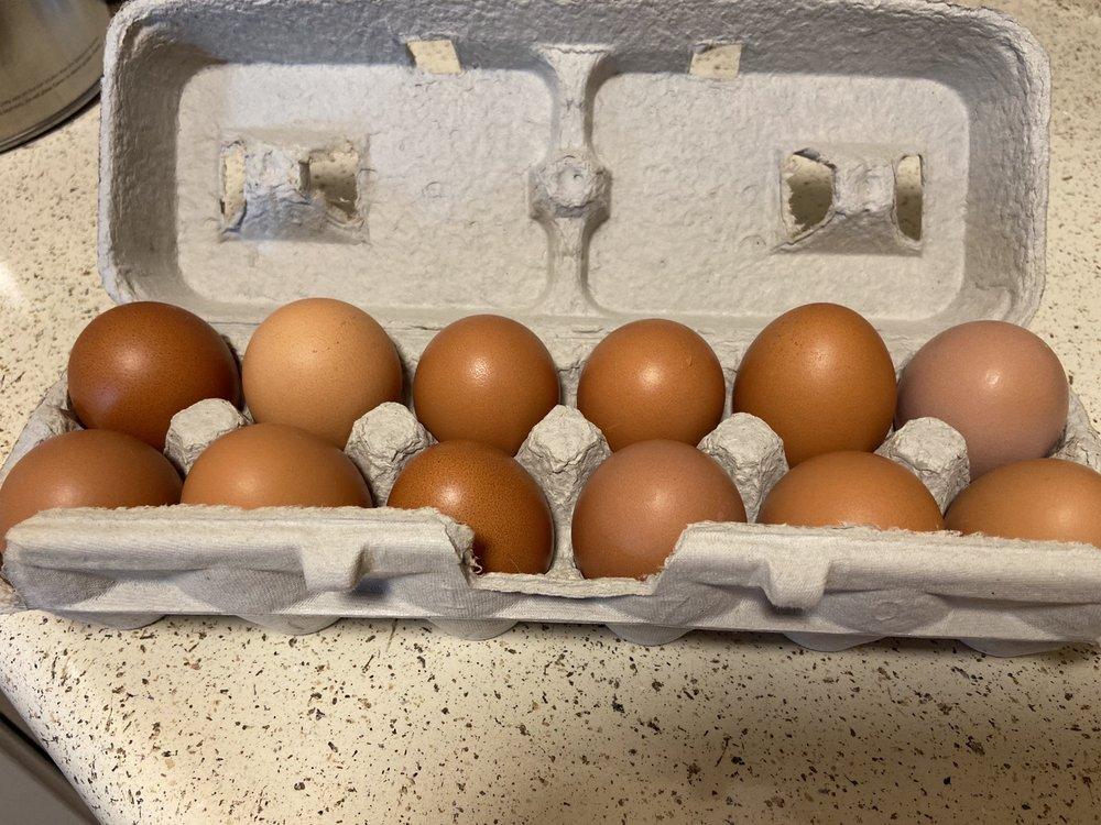 GB Egg Farm