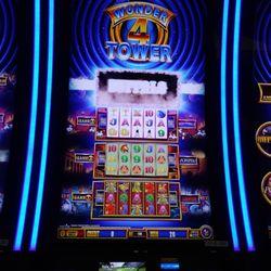 Black bear casino video poker pompano park poker tournaments