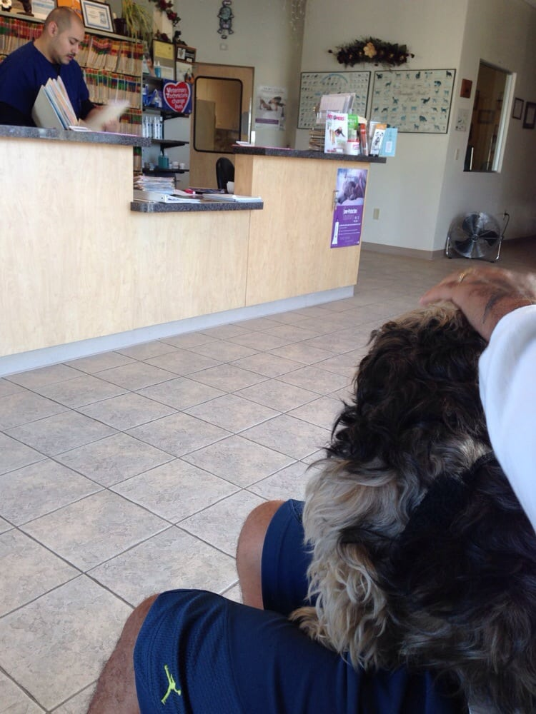 ER walk in to see what's wrong with mookster :( - Yelp
