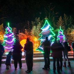 Photo Of La Zoo Lights Los Angeles Ca United States L A