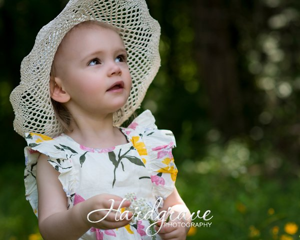 Hardgrave Photography: 24915 Hwy 64 E, Knoxville, AR