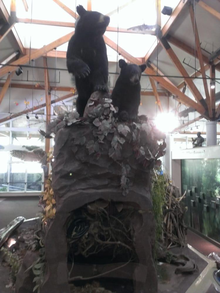 Delta Rivers Nature Center: 1400 Black Dog Rd, Pine Bluff, AR