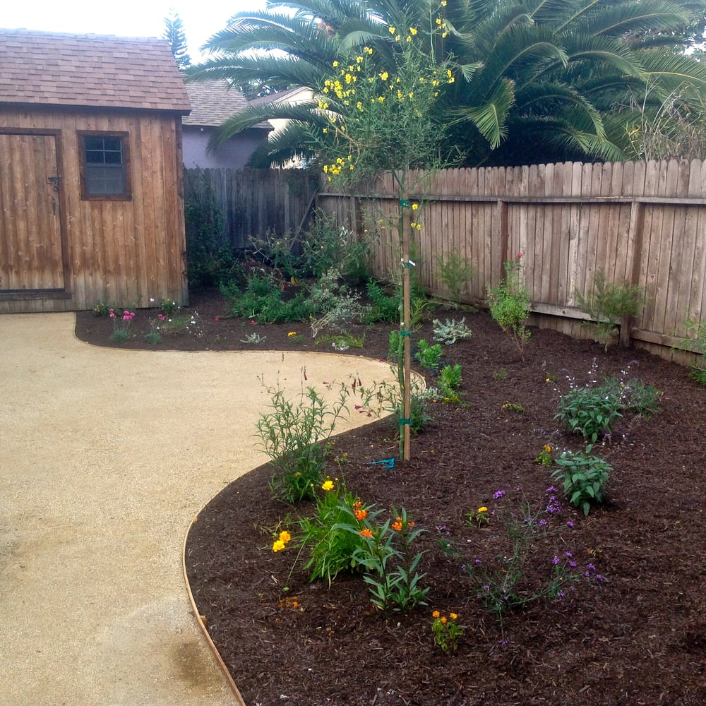 Crushed Granite Mulch : A decomposed granite dg path with mulch and natives yelp