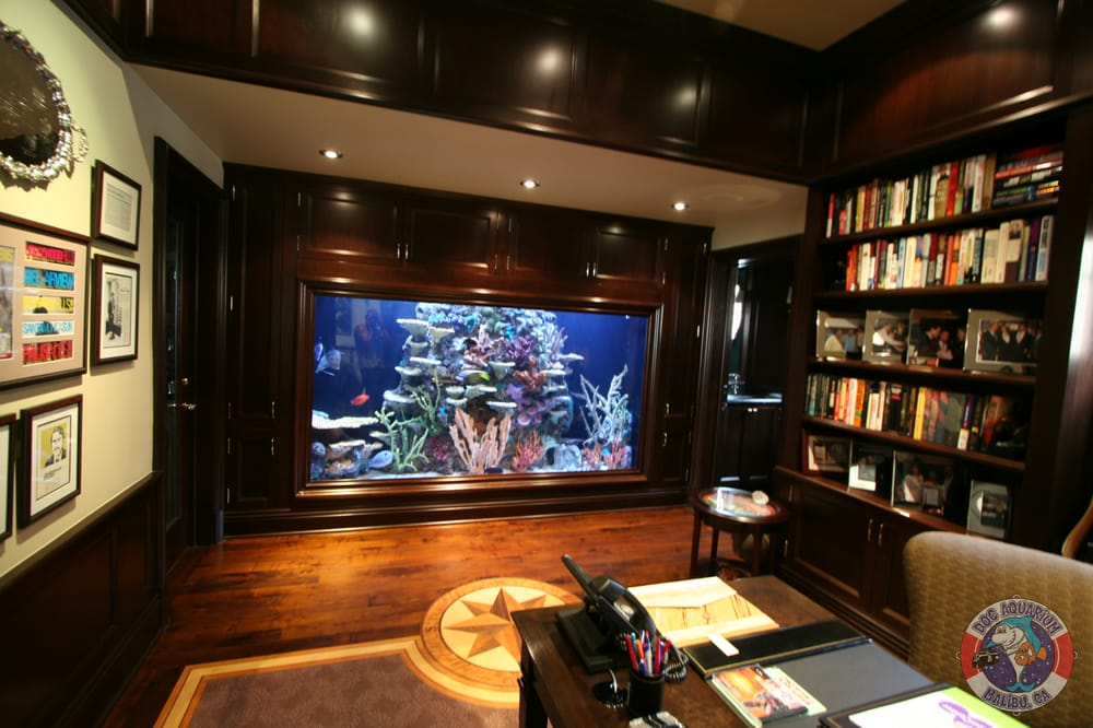 1000 gallons in a home library wall yelp for 1000 gallon fish tank for sale