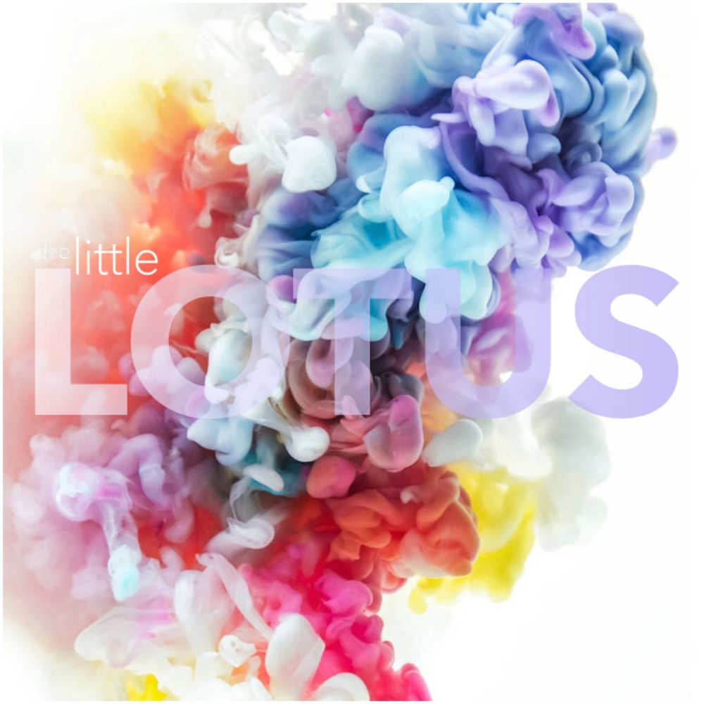 The little LOTUS PRO Nails: 6521 N Main St, Houston, TX