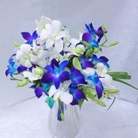Garden of Eden Flower: 10 Village Center Dr, Swedesboro, NJ