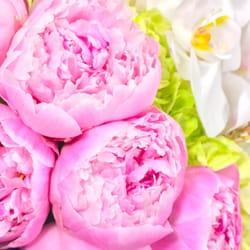 Belle Fleur 15 Photos 10 Reviews Florists 333 Alcazar Ave