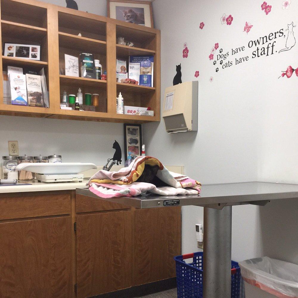 Waipio Pet Clinic
