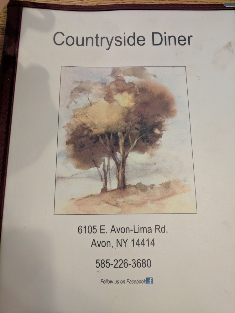 Country Side Diner: 6105 E Avon Lima Rd, Avon, NY