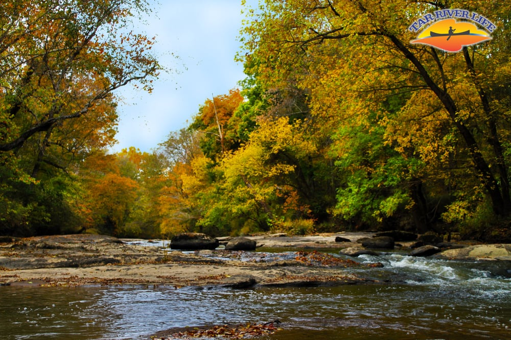 Tar River Life: 3240 Sledge Rd, Bunn, NC