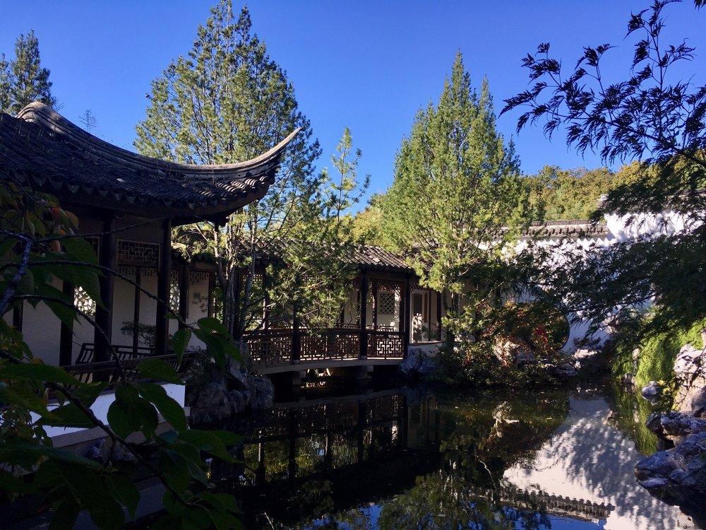 Chinese Scholars Garden Yelp