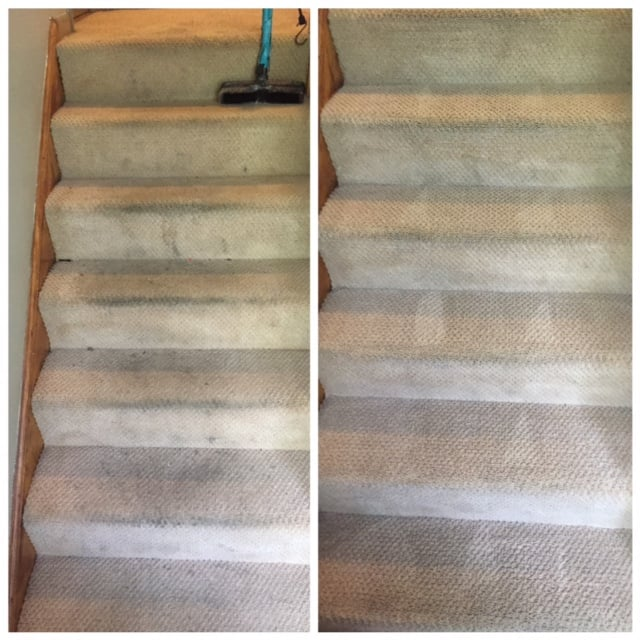 Nici Carpeting Cleaning: 5901 N Cicero Ave, Chicago, IL