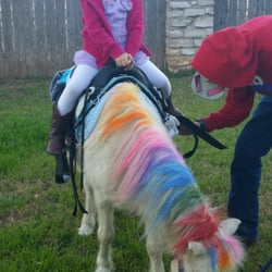 Austin Pony Parties - CLOSED - 35 Reviews - Party & Event Planning