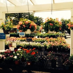 Delicieux Photo Of Good Earth Garden Center   Potomac, MD, United States. Annuals