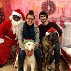 Petsmart Christmas Eve Hours.Petsmart 22 Photos 29 Reviews Pet Stores 1275 N Military Hwy