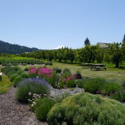 Hood River Lavender - 44 Photos & 23 Reviews - Flowers & Gifts