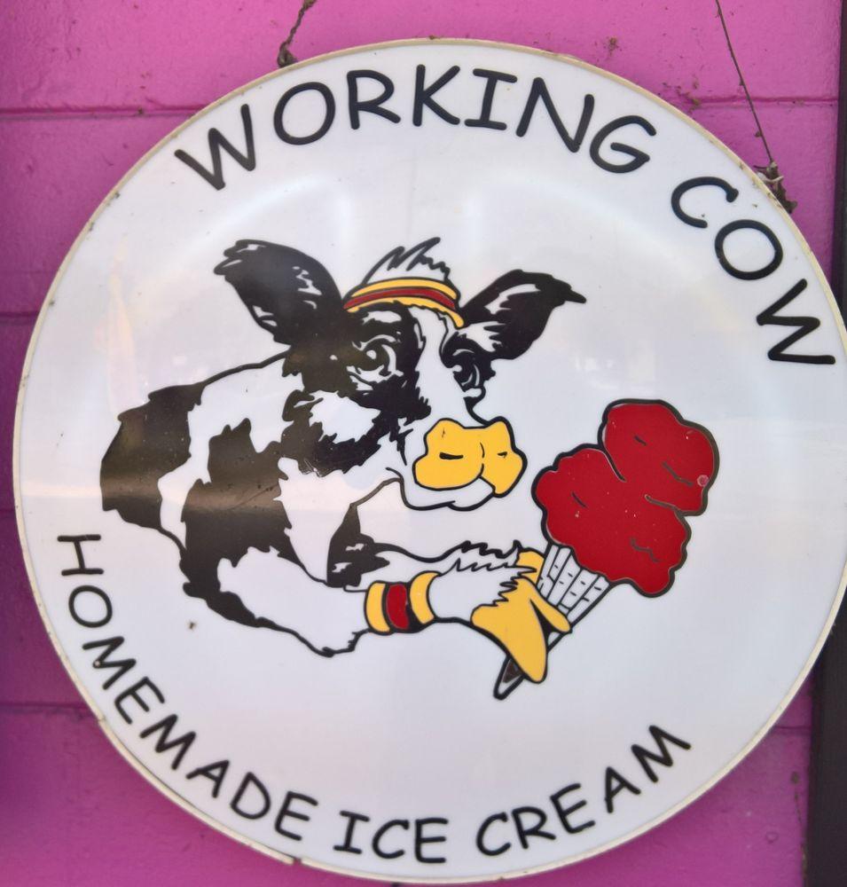 Ms Steve's Ice Cream: 5920 SE Hames Rd, Belleview, FL
