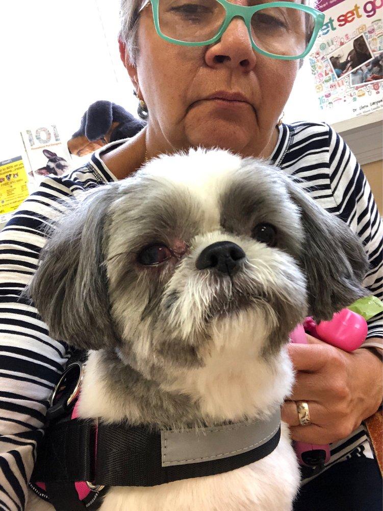 Quality Veterinary Care: 167 Meacham Ave, Elmont, NY