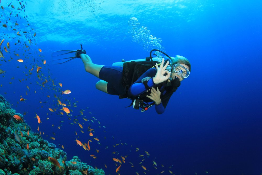 Anderson\'s Safe & Easy Scuba Certifications - Yelp