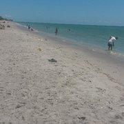 Photo Of Manasota Beach Venice Fl United States