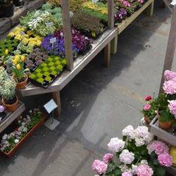 photo of chelsea garden center williamsburg williamsburg ny united states spring - Chelsea Garden Center