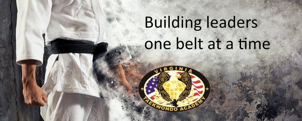 Virginia TaeKwonDo & Jiu-Jitsu Academy: 1245 Cedar Rd, Chesapeake, VA
