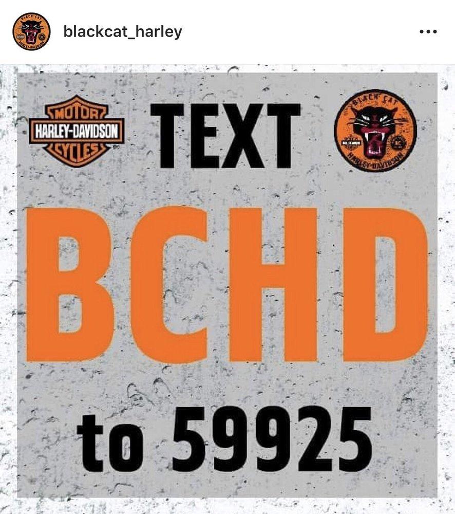 Black Cat Harley-Davidson: 928 N Winstead Ave, Rocky Mount, NC