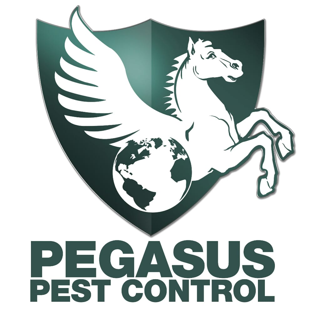 pegasus pest control 41 reviews pest control 1500 s river rd