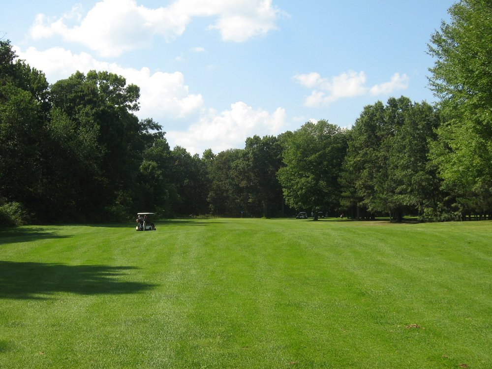 Fawn Crest Golf Course: 553 Seaman Rd, Wellston, MI