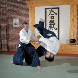 11th Street Dojo - Brazilian Jiu-Jitsu and Aikido - 29