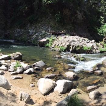 Garden Of Eden , Henry Cowell Redwoods State Park , 81