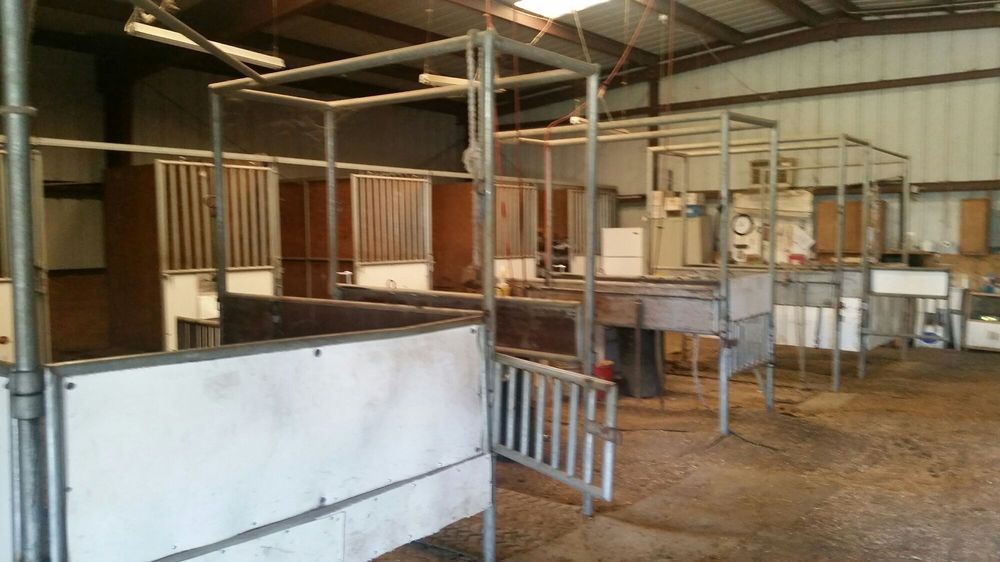 Victory Rose Thoroughbreds: 5144 Allendale Rd, Vacaville, CA
