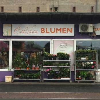 Blumen caliskan 12 fotos blumenladen florist for Dekoartikel frankfurt