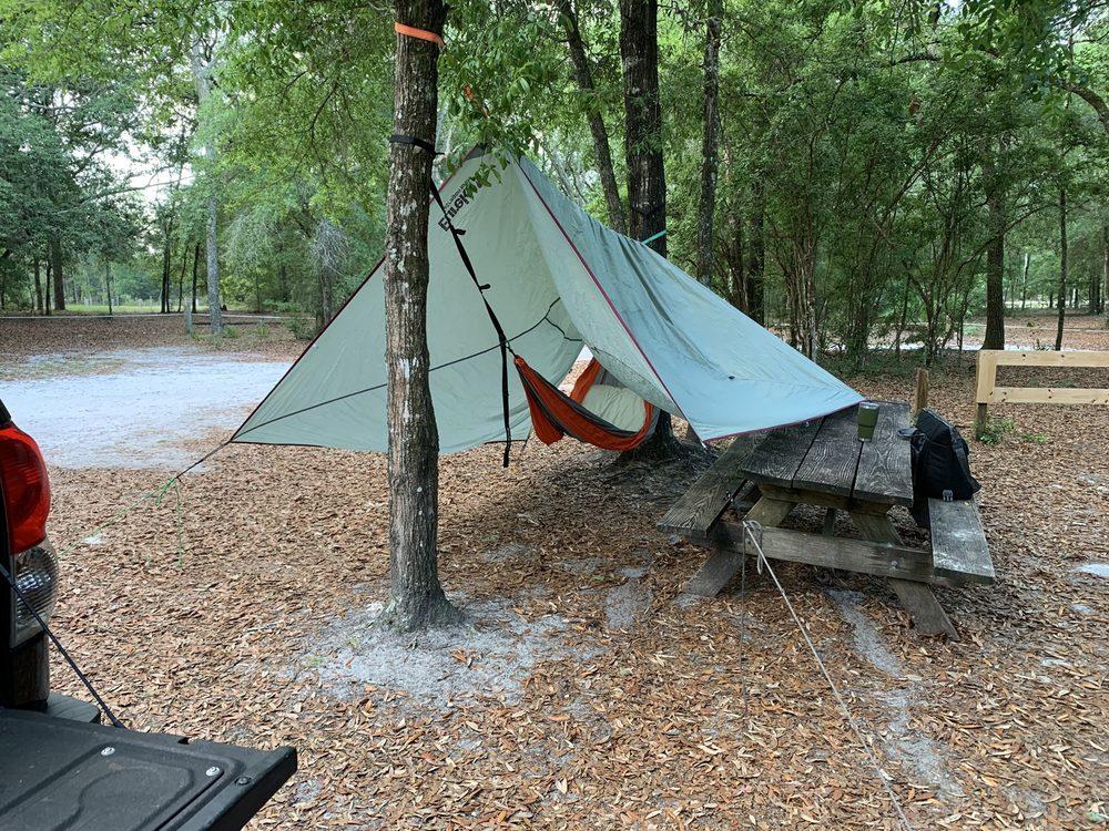 Gilchrist Blue Springs State Park: 7450 NE 60th St, High Springs, FL