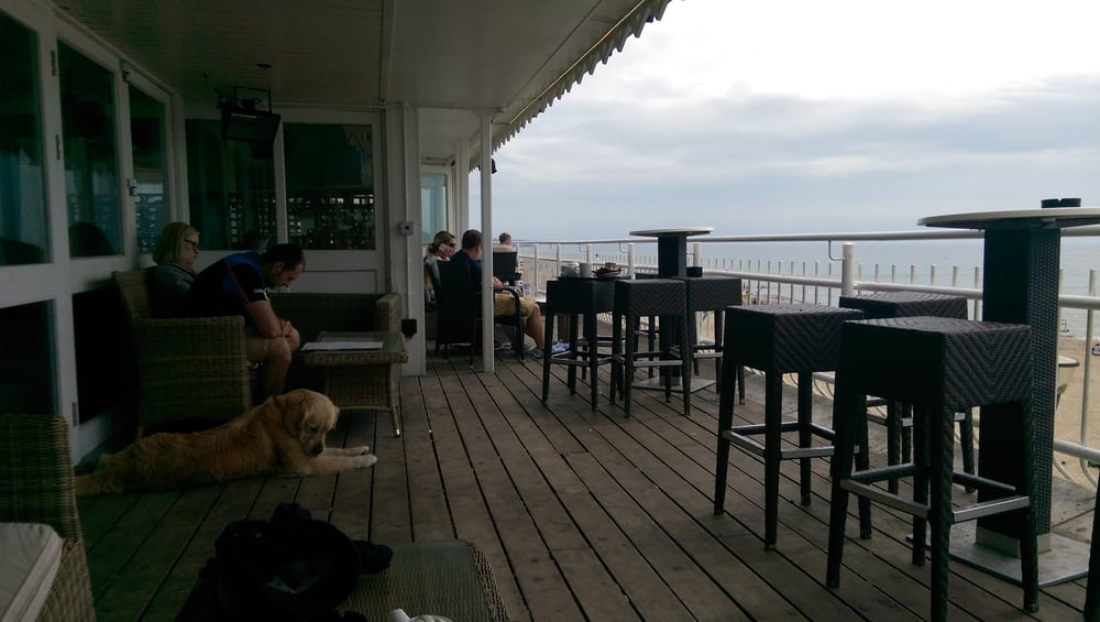 Photo Of Aruba Bournemouth United Kingdom They Let A Dog Upstairs Through