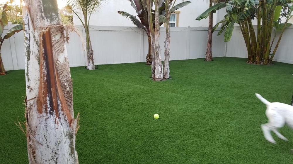Machado Landscaping Woodland Ca : Turf get quote landscaping woodland hills ca