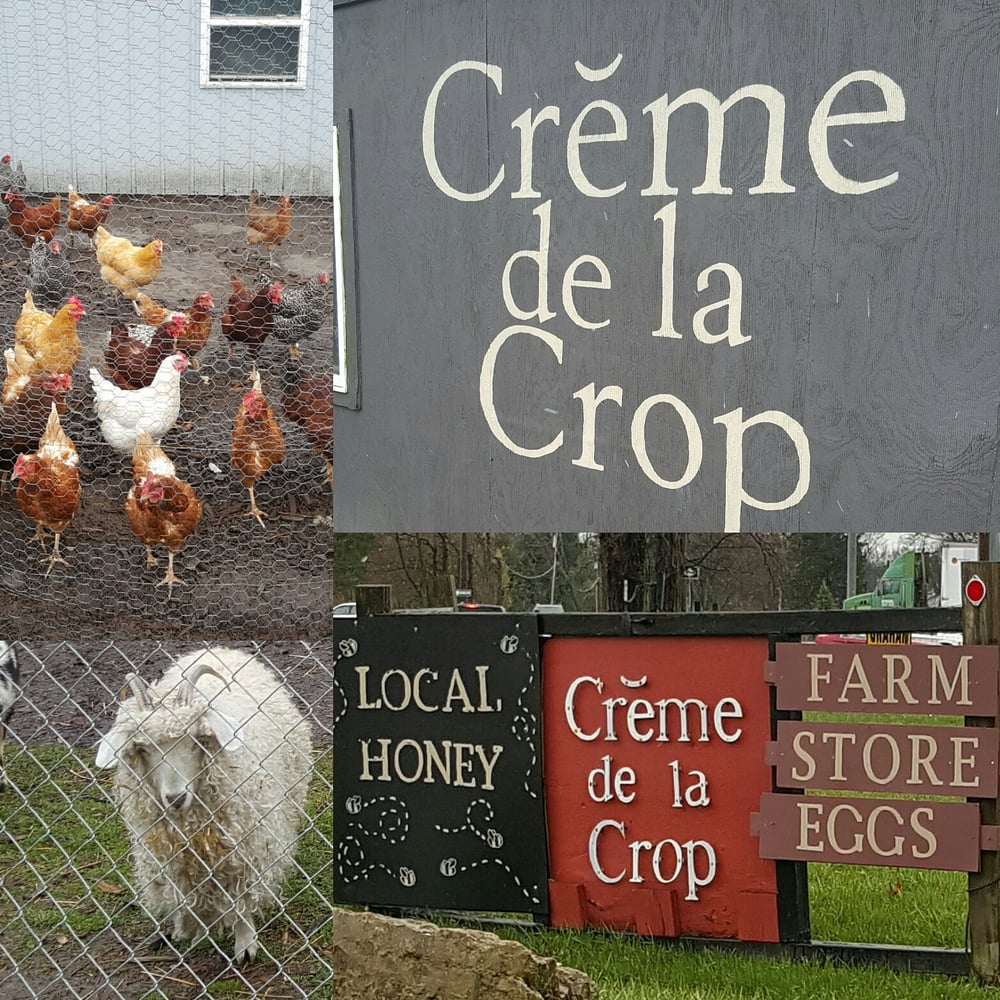 Creme de La Crop: 208 N 250th W, Valparaiso, IN